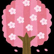 愛知県内で花見のできる桜の名所ベスト5